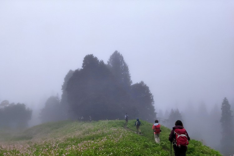 Bhrigu Lake Weather
